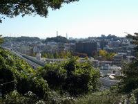 清水ヶ丘霊園から蒔田公園を望む