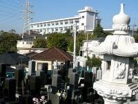 清水ヶ丘霊園から横浜清陵総合高校を臨む
