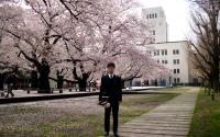 本館前の桜