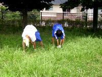 カマで草刈り