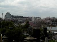 横浜清陵総合高校の校舎