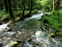 明神池方面への散策