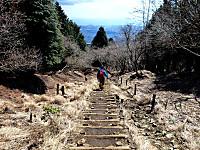 大倉尾根の道