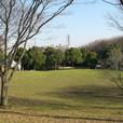 清水ヶ丘公園 自由広場
