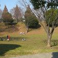 清水ヶ丘公園 自由広場で部活動