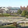 清水ヶ丘公園 プール
