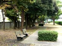 校舎南の庭
