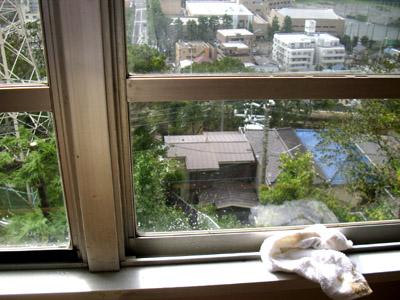 4階の南向きの窓より